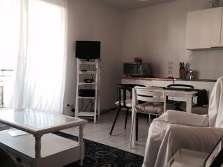Cozy studio apartment very close to Geneva - Ferney-Voltaire vacation rentals