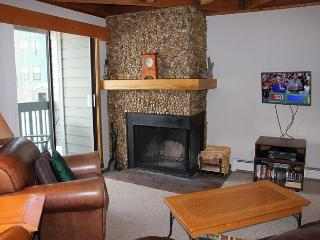 TH206F Lovely Condo w/Wifi and  Clubhouse - Silverthorne vacation rentals