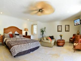 Beautiful, luxury studio type suite at Blue Palms! - Playa del Carmen vacation rentals