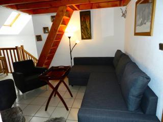 Appart 63m² 3/4 pièces, 6/8 pers,pied pistes, WIFI - Les Deux-Alpes vacation rentals