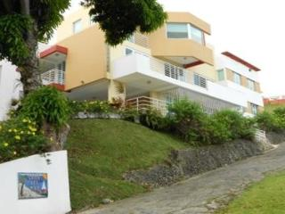 Lovely Oceanview Apartment - Ponce vacation rentals