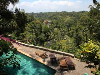 Best view in Ubud! A suite in an iconic house! - Ubud vacation rentals