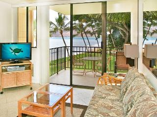KR 205 Ocean View - Kihei vacation rentals