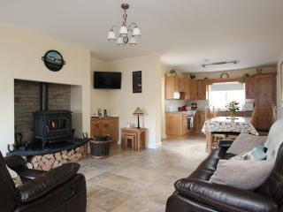 Pat Larrys Cottage - Omagh vacation rentals