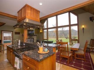 Casa Riverwalk - 3 bdrm - Stowe vacation rentals
