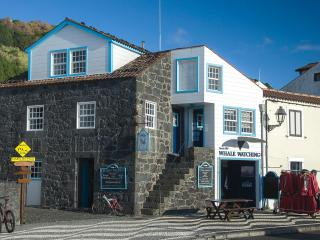 Casa do Francês - Lajes do Pico vacation rentals