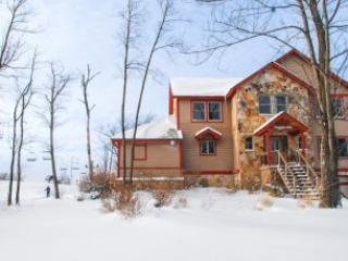 Boulder Lodge - McHenry vacation rentals