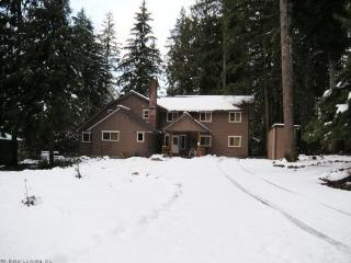 Mt Baker Lodging Cabin #3 - Very large cabin on acreage! - Maple Falls vacation rentals