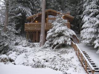Snowline #17 - The Tree House Over The Pond - Glacier vacation rentals