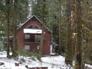 Snowline Cabin #74 - A new, elegant home with a private hot tub! - Glacier vacation rentals