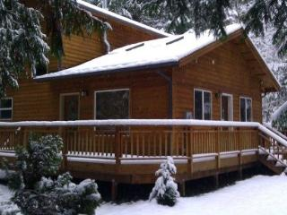 Mt Baker Rim Cabin #64 - It`s time to get away to this, Newer 2 bedroom cabin that is pet friendly! - Glacier vacation rentals