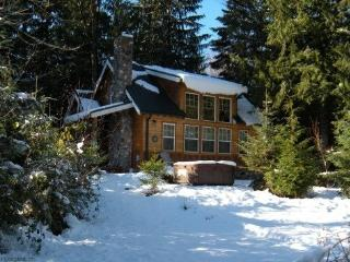 Mt Baker Rim Cabin #11 - This wonderful 2 story cabin is perfect for your family vacation needs with a private hot tub - Glacier vacation rentals