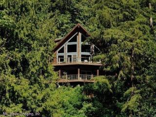 Silver Lake #7 - Unsurpassed lakefront views from this spectacular pet-friendly cabin! - Maple Falls vacation rentals