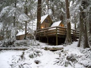 Snowline Cabin #86 A very rustic pet friendly Cabin with wood burning stove - Glacier vacation rentals
