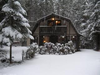 Snowline Cabin #81 - Very cozy cabin that sleeps 6! It has a hot tub. now with WiFi - Glacier vacation rentals