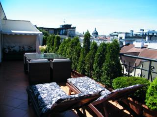 Luxurious double level penthouse in the centre - Krakow vacation rentals