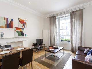 POSH!!! Great 2 Bedroom in London with Garden - London vacation rentals