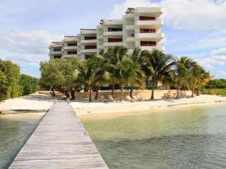 Absolutely Beautiful Beachfront Condo Turtle Beach - Isla Mujeres vacation rentals