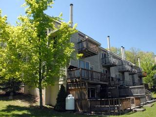 Amazing ski in/ ski out townhome! - McHenry vacation rentals