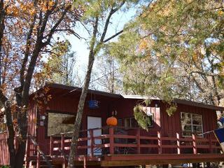 Secluded Treehouse Cabin - Pottsboro vacation rentals