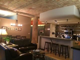Spring Sale! Gorgeous Condo on Michigan Ave - Chicago vacation rentals