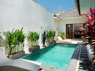 1BR private villa,15 min walk to Seminyak beach - Seminyak vacation rentals