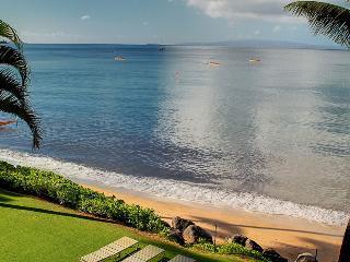 KIHEI BEACH, #307 - Kihei vacation rentals