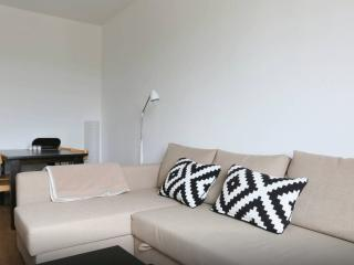 Nice Apartment with Wifi in Geneva Old City Center - Lake Geneva vacation rentals