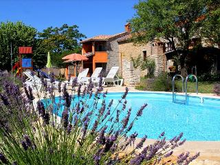 Authentic Stone Villa in Istria with a Beautiful Pool and Garden - North Caucasian District vacation rentals