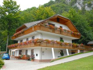 Spacious 4-star apartment not far away from Bled - Bled vacation rentals