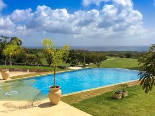 Exclusive Villa La Maison Michelle with Chef, Pool, Hot Tub, Terraces & more - Saint James vacation rentals