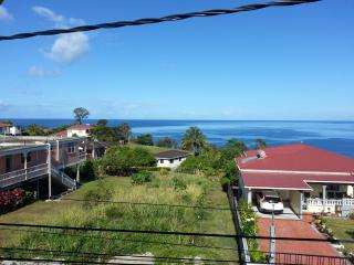 Wallhouse Holiday Apartment 1 - Dominica vacation rentals