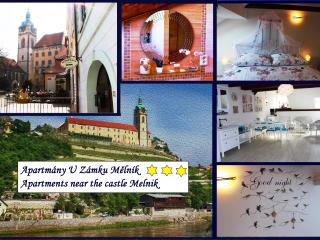 Apartments near the castle Melnik - near Prague - Melnik vacation rentals