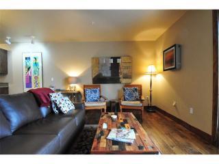 Olympic Terrace  Condominiums #203 - Ketchum vacation rentals