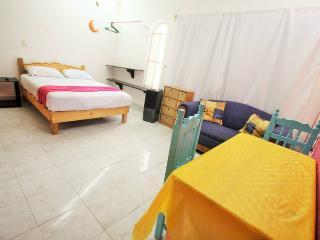 BRIGHT STUDIO 4 BLOCKS FROM THE BEACH!! - Playa del Carmen vacation rentals
