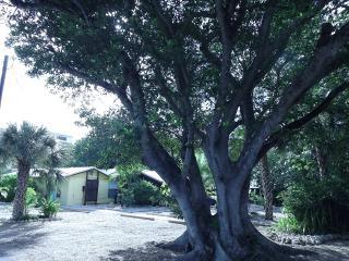 Manasota Key Beach House! A Must See! - Manasota Key vacation rentals