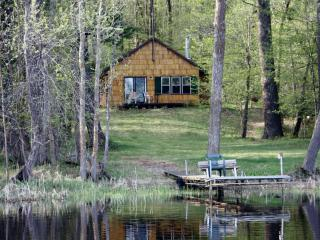 SECLUDED SUMMER CABIN RENTAL ON QUIET LAKE - Squaw Lake vacation rentals