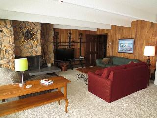 Anchorage West 71 - Dillon vacation rentals