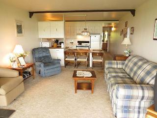 Lake Dillon Condos 106 - Dillon vacation rentals