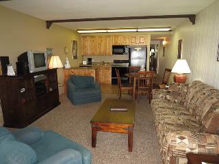Lake Dillon Condos 204 - Dillon vacation rentals