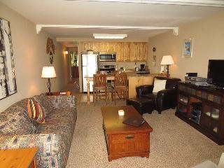 Lake Dillon Condos 205 - Dillon vacation rentals