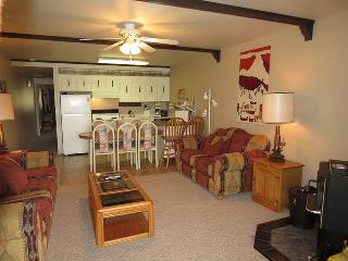 Lake Dillon Condos 209 - Dillon vacation rentals