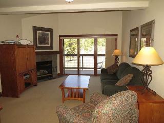 Oro Grande 415 - Keystone vacation rentals