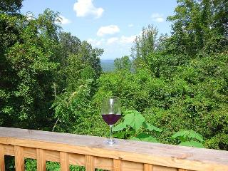 Knotty And Nice - Pigeon Forge vacation rentals