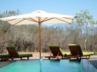 Thulani-Luxurious Safari Lodge - Limpopo vacation rentals