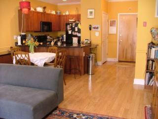 Spacious, upscale 1 bdrm sleeps 2 - Hoboken vacation rentals