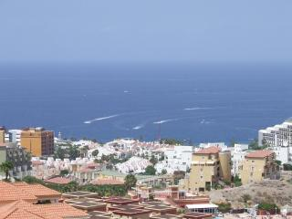 Two bedroom two bathroom apartment South Tenerife - Tenerife vacation rentals