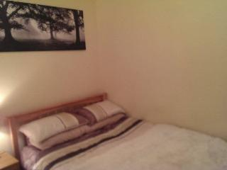 Prime Location 1 Bedroom Apartment - Dundrum vacation rentals