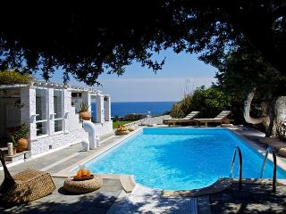 Agia Thalassa Villa - Parikia vacation rentals