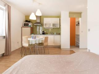 LA Studio - Conveniently in Ljubljana City Center - Ljubljana vacation rentals